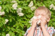 فصل بهار و درمان آلرژی فصلی با طب سنتی