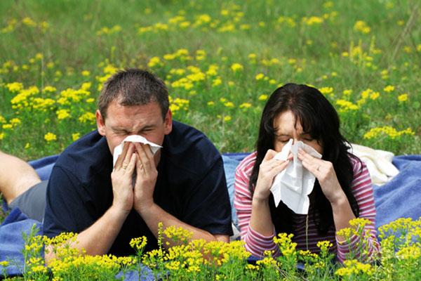 درمان آلرژی فصلی با طب سنتی