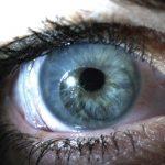کاربرد پرده آمنیون در چشم پزشکی